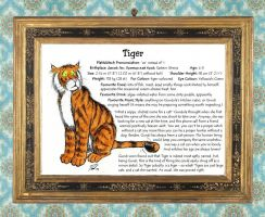 Character Sheet 2/9: Tiger by PaulEberhardt