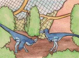 velociraptor enclosure by halfpennyro04