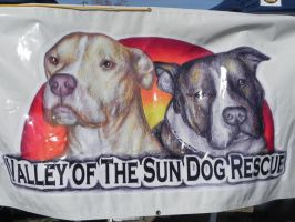 Valley of the Sun Dog Rescue by PrincessxOfxTennis