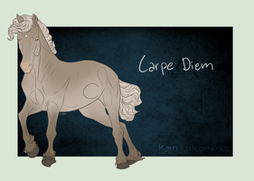 3104 Carpe Diem by Kaninkompis