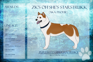 SD/TDCh ZK's Oh She's Starstrukk SDU Ref Sheet by xMush-Kennelsx