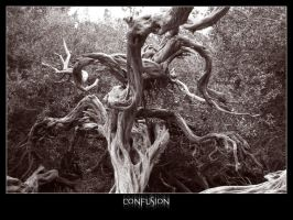 Envision. I. Confusion by Sekure