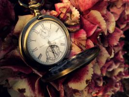 Pocket Watch by jelephantasia