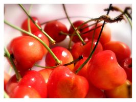 just cherry by tiefel