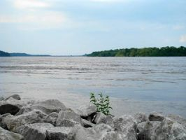 Mighty Mississippi River by Scapes-club