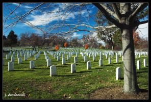 Arlington National Cemetary by clarinetJWD
