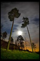 Captivating Moonlight by RS-foto