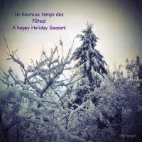 Fetes - Holiday Season by hyneige