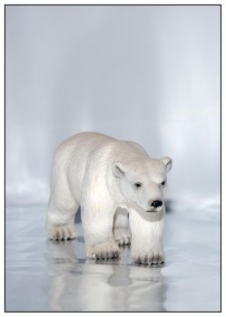 Polar Bear by ahaa