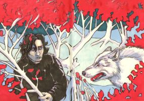 Beyond the Wall by kethryn