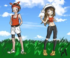 Pokemon Body Swap by CM-The-Artist