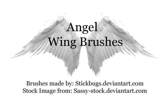 angel wing brushes. by stickbugs