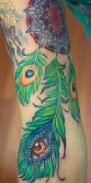 Third Eye Peacock Dream Catcher by seanspoison