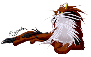 SSS Tigerclaw (pretty old) by Ridomesu