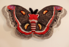 Cecropia Moth Needle Felted Wall Decor by DancingVulture