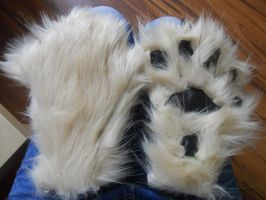 Wolf Paws by PeCe95