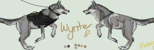Wynter Ref Sheet by XxTheFoshyNozz
