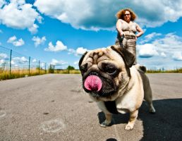 I will lick your lens by BenKodjak