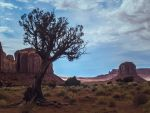 The Painted Desert by ViridianRoses