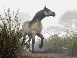 Pale Horse in the Mists by deskridge