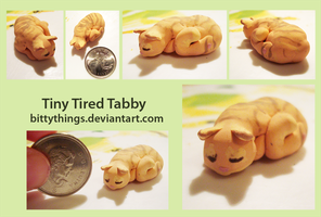 Tiny Tired Tabby by Bittythings