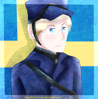 APH: Sweden by Field-Of-Roses