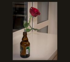 Rose In Bottle by Chunosov
