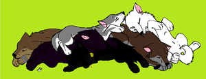 ria's pack sleeping by wolvesanddogs23