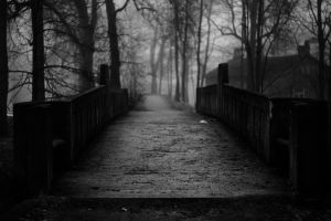 foggy bridge by dzorma