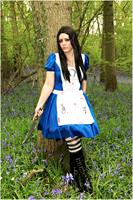 Bluebells by jagged66