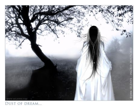 + Dust of dream by Selenys