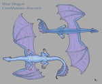 Blue Dragon unpatterned by BlueWingedCoyote