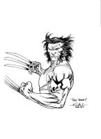 Wolverine juin 2011 la cartonnerie Pathe Cinema by SpiderGuile