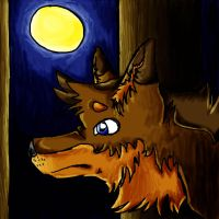 Wolf in the Night by TalaSoyala97