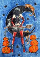 Halloween witch 2004 by Miss-Gato