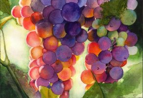 Grapes by Shirley77