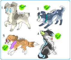 || Puppy adoptable batch- Closed || by HyperMuttAdoption