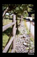 Fence. by Achillies875