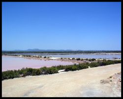 Ses Salines by hypnotic