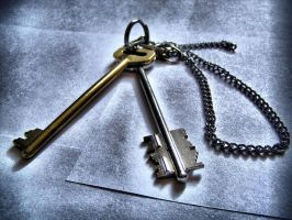 Metal Keys 13135540 by StockProject1
