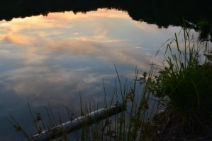 Reflection on the water by Singinchic7