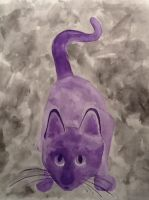 Purple Cat by Qualiaicious