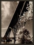 Yes, it's a Bridge by midgard