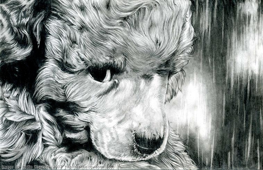Sad Puppy by Sessko