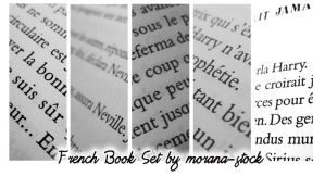 French Book Set I by morana-stock