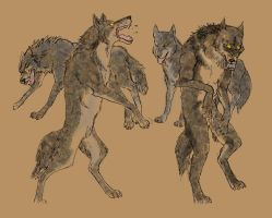 Wolf into Werewolf by WolvenIllusions