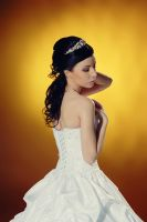 bride wedding dress stock 1 by Luria-XXII