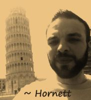 Leaning Tower ID by Hornett