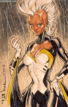 Storm by ToddNauck