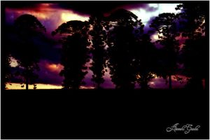 Trees in the Sunset 2 by arooshigauba
